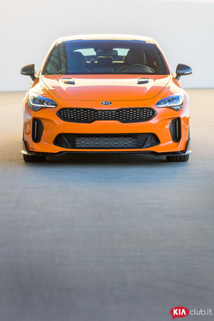 Kia Stinger Federation