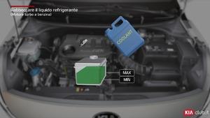 Rio - Rabboccare il liquido refrigerante [Motore turbo a benzina] (For Italy)